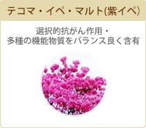 テコマ・イペ・マルト(紫イペ) 選択的抗がん作用・多種の機能物質をバランス良く含有