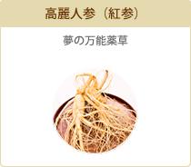 高麗人参(紅参) 夢の万能薬草